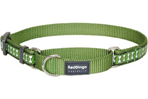 Red Dingo Martingale Hundehalsband, reflektierend, klein, grün (Martingal Grün)