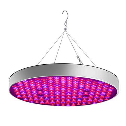 GHC LED light, per Germinazione, Vegetativo e Fioritura 50W US Plug LED Pianta Grow Lights, Shengsite UFO 250 LEDs Piante da appartamento Growing Lamp Bulbs con Red Blue Spectrum Hydroponics Plant Han