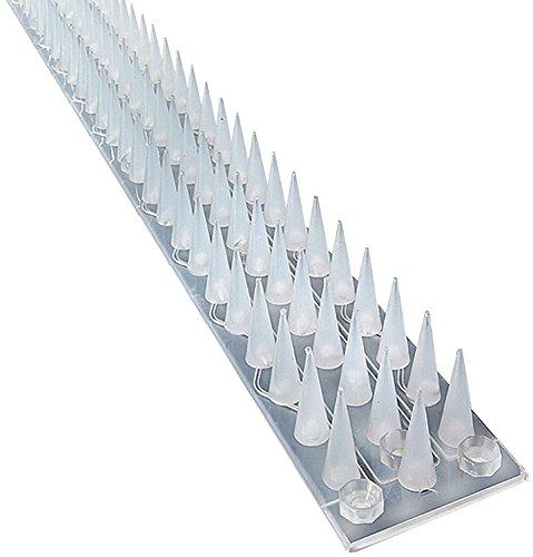 Sistema de Pinchos Escalada, de la Marca Pestexpel®, para Gatos, Pájaros, Humanos, para Valla, Ventana, Pared, Puerta cobertizo, Paquete de 5Metros, Transparente