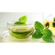 x1 Green Mint 10 ML Genuine E-Liquid Flavour 0mg Zero (NO TAR NO