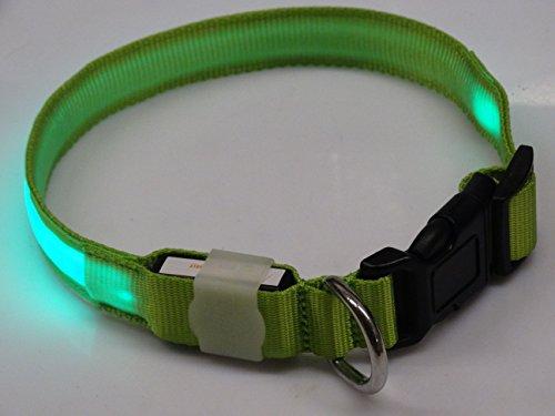 Rutis Tierwelt LED Leuchthalsband Basic 2 per USB aufladbar, Grün, Größe L -