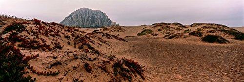 Panoramic Images - View of Sand Dunes and The Morro Rock Morro Bay San Luis Obispo County California USA Kunstdruck (15,24 x 45,72 cm) -