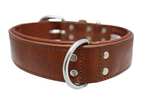 hundehalsband-echt-leder-halsband-559-x-38-cm-braun-western-gepolsterte-kragen-100-echtem-argentinis