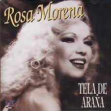 ROSA MORENA - TELA DE ARAÑA