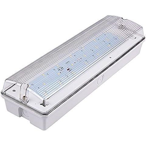 Biard Luz de Emergencia LED Rectangular 7W - Blanco Frío - Señal de Seguridad - Vida Útil 25000 Horas - Uso Comercial - Ideal Para Oficinas & Negocios