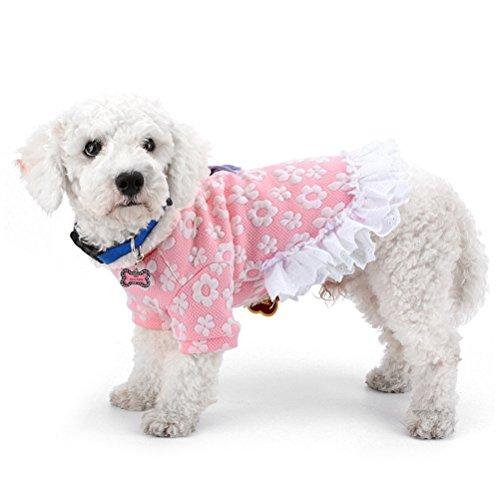 zunea Kleiner Hund Kleid aus Baumwolle Floral Rüschen Spitze abgestuftes Mädchen weiblich Princess Puppy Winter Coat Warm Chihuahua Hund Kleidung Outfits (Mädchen Wie Dressing Up Ein)