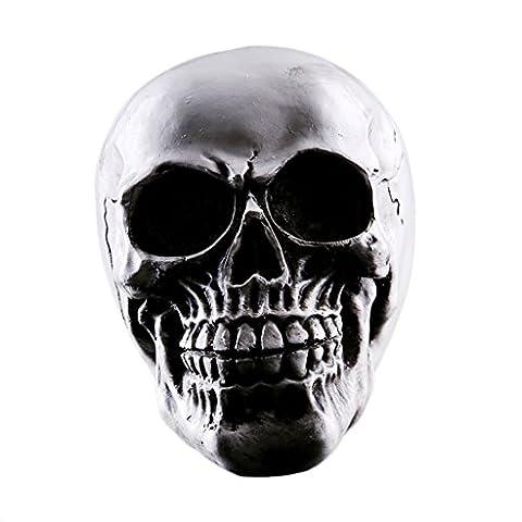 MagiDeal Schädel von Homo Sapiens Statue Figur Menschliches Skelett Kopf Anatomie Didaktik Menschlicher Schädel Figur für Sammlung Medizinische Skelett # 2
