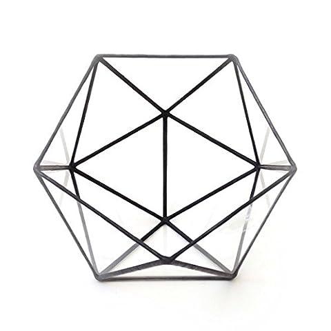 icosaèdre Grand Terrarium en verre géométrique/en verre