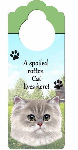 E&S Pets Warnschild Perser Katze Holz Zeichen A Spoiled Rotten Persian Cat Lives Here mit kunstvollen Foto á 10von 10,2cm kann auf Türen oder überall aufgehängt Werden in Home -