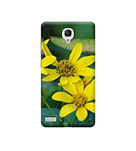 EPICCASE Premium Printed Mobile Back Case Cover With Full protection For Xiaomi Redmi Note (Designer Case)