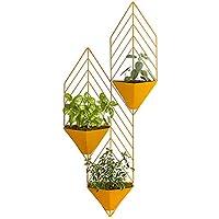 Soporte para Plantas de jard/ín Clips Sellos jardiner/ía Twisty pl/ástico Apto para Invernadero Tallos 100 Piezas Transparentes vinos Acogedor Clips para Plantas Ideal para asegurar Plantas
