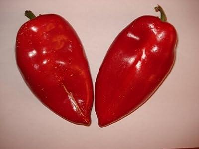 """Spitzpaprika (Ungarischer Rießen-Spitzpaprika) 10 Samen >>>""""GIGANTISCH-GROßE-FRÜCHTE""""<<< von Samenchilishop auf Du und dein Garten"""