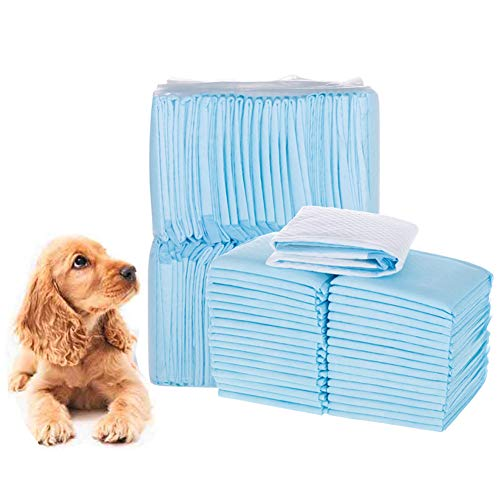 WXLJJYPD Trainingsunterlagen für Welpen Puppy Training Pads Welpentoilett Super Saugfähig,L