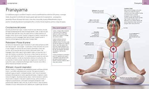 Zoom IMG-6 yoga manuale per la pratica
