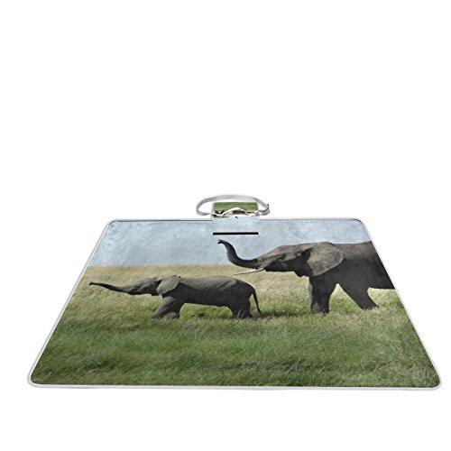 Bennigiry Elephants On The Prairie - Manta para picnic al aire libre,...