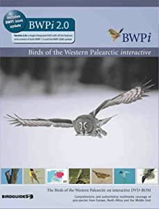 DVD Birds of Western Palearctic (PC/Mac) [import anglais]