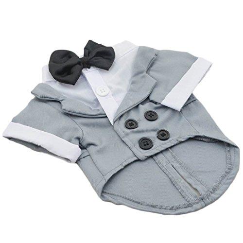 Blazer Stil Double-Breasted Shirt für Kleine Welpen Hunde Hemd Jersey Hundekostüm Bequeme Pullover Frühling Herbst Pulli Atmungsaktiv Hunde Bowknot Tops Fest Hundemantel (XL, Grau) -