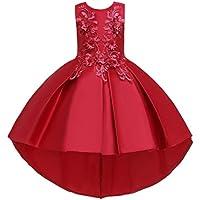 Niña Traje Fiesta Vestido | Niño niño niña sin Mangas Bordado Princesa Vestido de Fiesta Vestido Cosplay Ropa 3-14 años