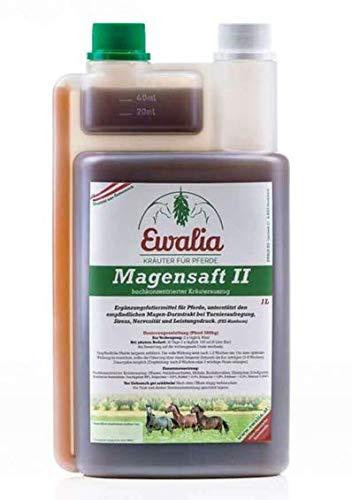 Ewalia Magensaft Ii 1 Liter Flasche 100{0f8f510b68aa3358ff3fad4d6ae75e18d27c635768cd797d1817d3d60a465ddd} Reine Kräuterbasis