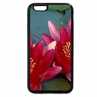 iPhone 6S Plus Case, iPhone 6 Plus Case, Flores aquaticas