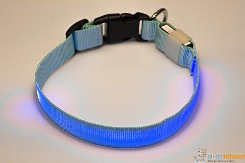 LED Leuchthalsband Basic 1 per USB aufladbar, Größe M, Blau - 3