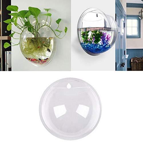 PICCOLI MONELLI Aquarium für Fische aus Glas Geeignet auch als Vase Design Wand für Wasserpflanzen 9 cm Visto aus TV