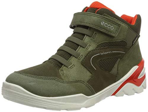 Ecco Jungen Biom VOJAGE Hohe Sneaker, Grün (Grape Leaf/Tarmac 57189), 39 EU