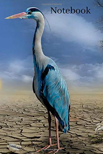 Notebook: Blue Crane Heron Fishing Homework Book Notepad Notebook Composition and Journal Diary