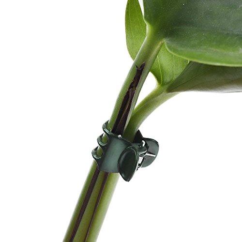 Soporte para Plantas Tildenet Gardenware FS-24