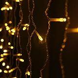 GlobaLink® 6×3M Lichterkette mit 600 LED-Lämpchen Lichtervorhang Licht Schnur, warm weiße Beleuchtung für Fenster, Weihnachten, Party, Outdoor, Hochzeit, Dekoration usw. Vergleich