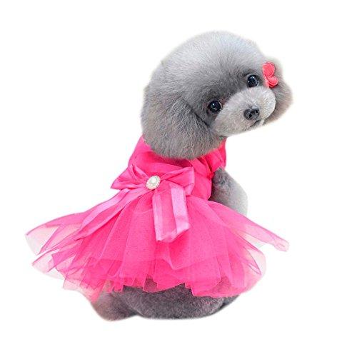 SunGren Vestido de perro pequeño, vestido de burbuja de perro de mascota de moda Gato de perro falda de verano linda para perros pequeños(XL,Rosa fuerte)