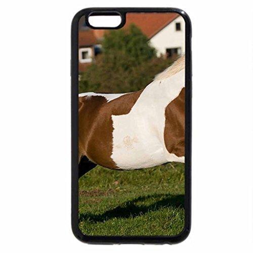 iPhone 6S Plus Case, iPhone 6 Plus Case, Nice winer time...