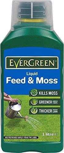 scotts-evergreen-liquid-feed-and-moss-1l-667m2-kill-moss-thicken-lawn