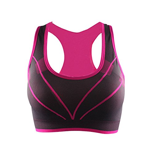 Women Fitness Yoga Sport BraQuick-drying Seamless Bras Rose Red