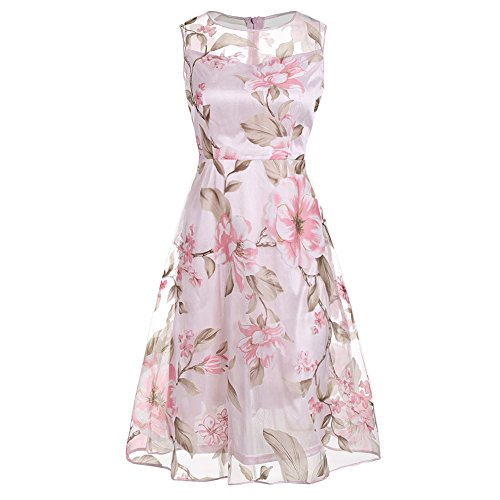 DressLily Sleeveless Floral Sheer Organza Dress,Pink,L