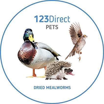 2kg getrocknete Mehlwürmer für Wildvögel. die beste Qualität Mehlwürmer ideal für Vogelfutter. ideal für Vogelhäuschen und Vogeltische. köstliche und nahrhafte Mehlwürmer
