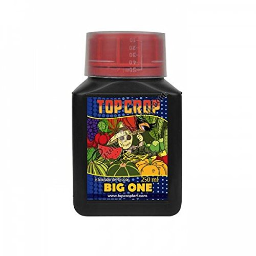 Top Crop - Big One - 250ml
