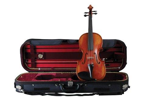 Guardian cv-050Deluxe Professional Violine Fall -