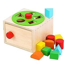 Toys of Wood Oxford Forma di Scatola di Legno – Gioco di ordinamento per Imparare Forme e Colori – Giocattolo educativo in Legno per Bambini…