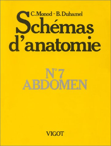 Schémas d'anatomie, numéro 7, abdomen