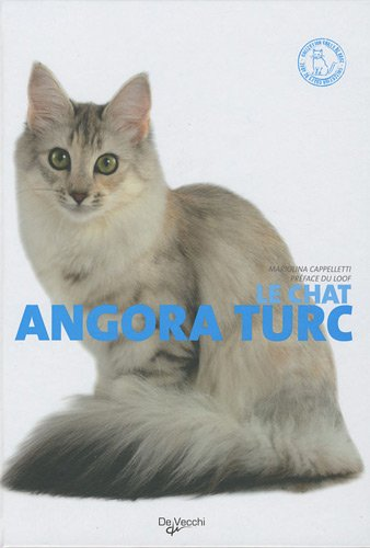 Le chat angora turc