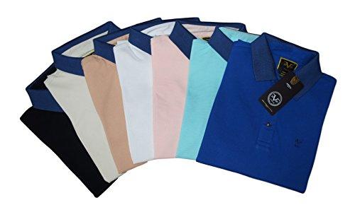 V1969 - Herren Poloshirt, Blau Kragen, 100% Baumwolle, Custom Fit Hazelnut