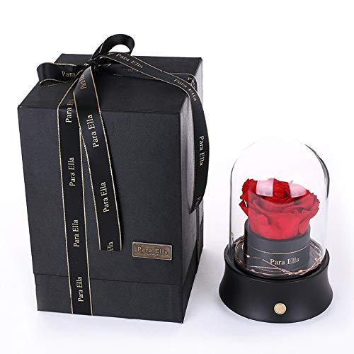 qiyanValentines Tageskreatives Geschenk-ewige Blumen-Bluetooth-Sprecher-Glasabdeckung mit Lichtern buntes Rosen-Rot
