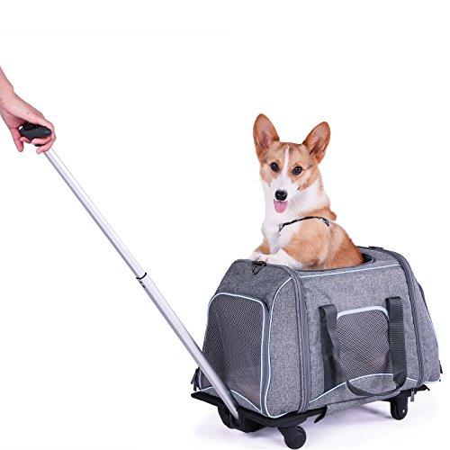 Petsfit Pet Travel passeggino, cane cucciolo passeggino Jogger con 4ruote, vettore con fibbia della cintura di sicurezza in auto, passeggino cane, 58cm x 33cm x 35cm