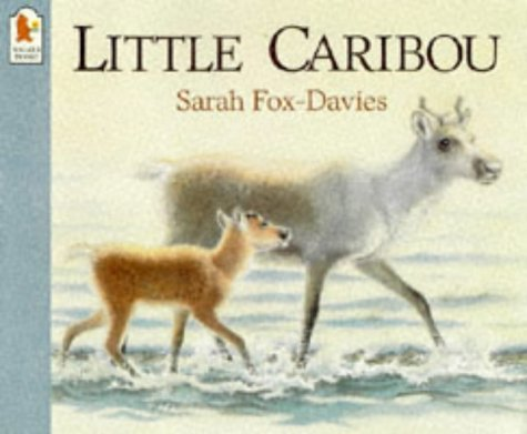 Little Caribou