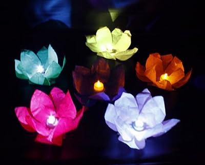 HAAC 10 Wasserlaterne Lotus Lotusblüte Schwimmlaterne Glückslaterne Sommerlicht Seerosenlicht bunt von HAAC auf Lampenhans.de