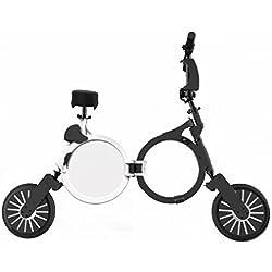 Scooter Eléctrico Plegable Ultraligero (10 pulgadas)