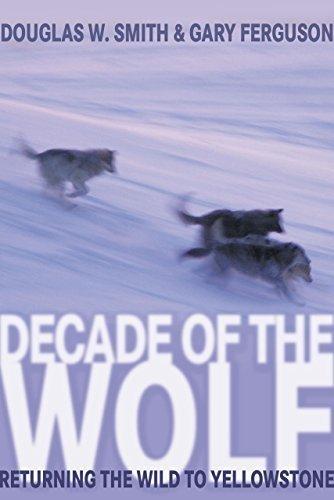 Decade of the Wolf: Returning The Wild To Yellowstone by Smith, Douglas, Ferguson, Gary (2005) Hardcover
