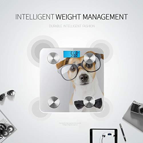 Intelligenter Hund Jack Russell Terrier Brille Körperfettanalysator Dünner Skalenspuren 8 Schlüsselkompositionen Analysator Mit Fitness Apps synchronisieren 400 Pfund