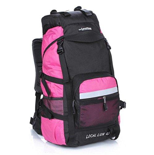 Wmshpeds Professional pacchetto esterno 45L viaggi borsa a tracolla in nylon impermeabile di grande capienza zaino alpinismo H
